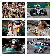 Nico Rosberg F1 Champion Du Monde Idéale jeu de carte postale