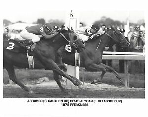AFFIRMED BEATS ALYDAR 8X10 PHOTO HORSE RACING PICTURE JOCKEY PREAKNESS S CAUTHEN