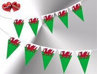 Welsh Dragon Flag Theme Bunting Banner Stylish party decoration by PARTY DECOR