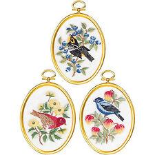 Embroidery Kit ~ Janlynn Set of 3 Feathers & Flora Birds w/Frames #004-0862