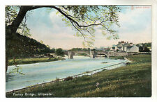 Pooley Bridge - Ullswater Photo Postcard c1905