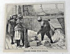 small 1878 magazine engraving ~ FILLING BOXES Sugar Estate in Cuba