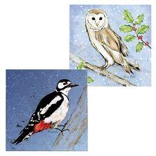 Gps luxe cartes de noël-chouette & pic oiseaux dans la neige (10 cartes)