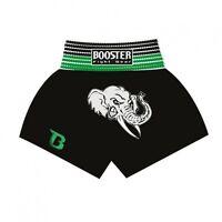 Booster Muay Thai, Kickboxen Shorts. TBT-17, Gr. S-XXL, MMA, Freefight, Satin
