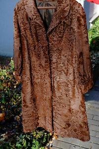 Südwestafrikanischer SWAKARA Breitschwanz - Persianer Mantel