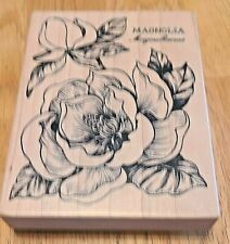 Magnolia Accessory Background and Text Stamps