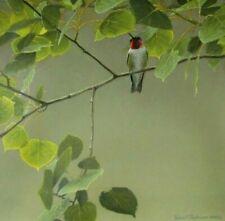 Vintage Art Robert Bateman Male Ruby Throated Hummingbird Cottage Lane Red Fox