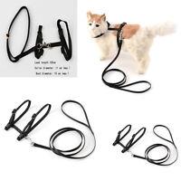 Cat Walking Lead Dog Leash Adjustable Harness Collar Pet Kitten Puppy Collar