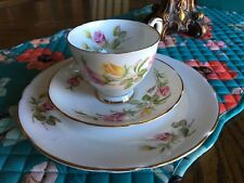 Royal Stafford Tea Rose Cup, Saucer and Tea Plate !