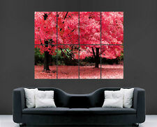 BLOSSOM TREES POSTER PINK BEAUTIFUL AUTUMN BRIGHT FOREST PRINT LARGE