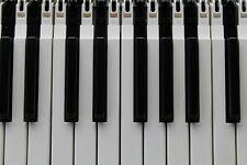 Roland Fantom, V Synth Series, Jupiter 80, VK and VP Series  Replacement Key