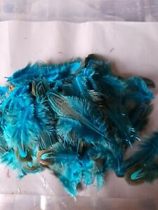 Pheasant  feathers BLUE X 50pcs 5-9cm Millinery  Crafts   New UK