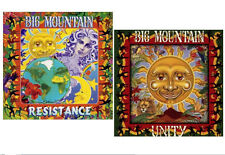BIG MOUNTAIN * 2 New CD's * UNITY (1994) + RESISTANCE (1996) Factory Sealed CD's