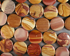 """COLORFUL MAUVE & GOLDEN TAN PETRIFIED FOSSIL WOOD JASPER 30MM COIN  BEADS 16"""""""