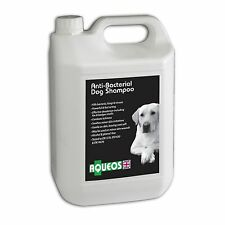 Aqueos Kennel Disinfectant Ready to Use 5L Kills Bacteria, Fungi & Viruses