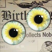 25mm Brown Toad Frog Glass Taxidermy Eyes Animal Realistic Jewelry Art Supplies