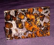 Meteorit Pallasit Seymchan geätzt Olivine teils transluscent 36x23x2,6mm 10g 陨石