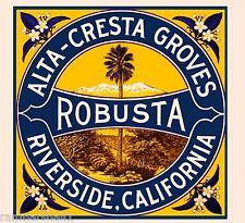 Riverside Alta-Cresta Groves Robusta Orange Citrus Fruit Crate Label Art Print