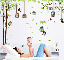Large Wall Stickers Family Tree Photo Frame Birds  Vinyl Decoration Mural Decals
