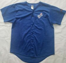 Dodgers Stadium Employee Blue Adult Jersey (Large)
