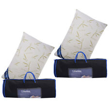 GIANTEX Set of 2 Queen Bamboo Shred Memory Foam Hypoallergenic Pillow Carry Bag