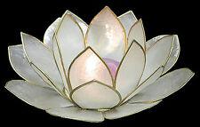 "Capiz Shell ""Lotus Flower"" Tea Light Holder White w. Gold Trim Beach Decor Coast"