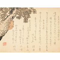 Shell Of Cicada C1848 Kangyoku Huge Wall Art Poster Print