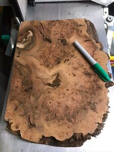 Burr Elm / Wood Turning / Stickmaking / Pen Making Blank