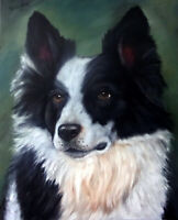 Original Dog Oil Painting Portrait of a Border Collie 11x14 Canvas Panel Board