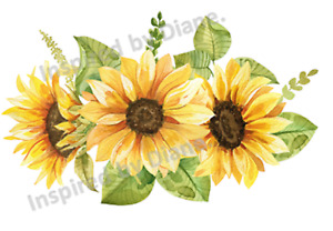 Clear Wall & Furniture STICKER Extra Large A3 /Cut & Stick/ Sunflowers  /912