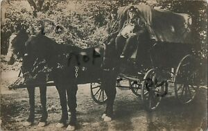 WW1 soldier group RE Royal Engineers Drivers with pair of Horses & GS Wagon