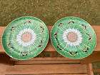 Pair Of Antique Chinese Famille Butterfly Cabbage Porcelain  Plates Qing Dynasty