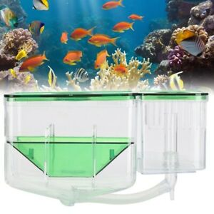 Aquarium Fish Tank Breeding Box Double-Layer Isolation Hatching Incubator  NEW