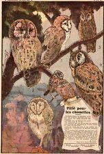 IMAGE 1942 PRINT DE LA FONTINELLE OISEAU BIRD OWLES CHOUETTE HULOTTE EFRAIE