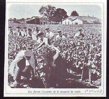 1978  --  ST EMILION  JURATS VERIFIANT MATURITE RAISIN