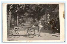 Cawston Ostrich Farm Rppc Young Boy in Ostrich Cart Postcard Udb D6