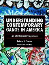 Understanding Contemporary Gangs in America : An Interdisciplinary Approach...
