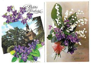 2 Belles CPM cartes postales violettes de Toulouse et Muguet Porte-bonheur fleur