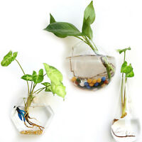 Creative Hanging Glass Planter Vase Terrarium Container Garden Wall Decor