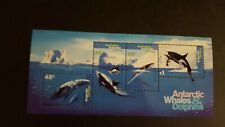 Antarctic Whales and Dolphins MUH