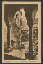 Hildesheim  1000jähriger Rosenstock