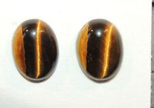 Tiger's Eye 12x16mm with 5mm dome Cabochons Set of 2 From Africa (10610)