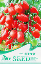 1 Pack 30 Tomato Seeds Red Cherry Tomatoes Garden Vegetable Fruit B065