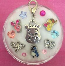 Floating Charm Set~*~Winnie The Pooh Tigger Piglet Eeyore Bee~*~4 Living Locket