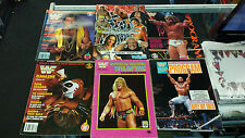 WWF WRESTLING BUNDLE MAGAZINES PROGRAMS ULTIMATE WARRIOR WILDFIRE COLOURING BOOK