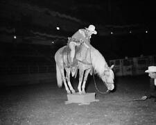 Roy Rogers Dale Evans Trigger - 8x10 Photo