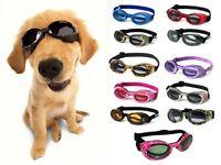 Dog Puppy Sunglasses UV - Doggles ILS - Dog Puppy Eye Protection