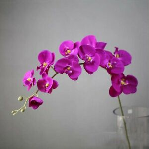 Party Decoration Butterfly Orchid Artificial Flower Home Decor Fake Flowers