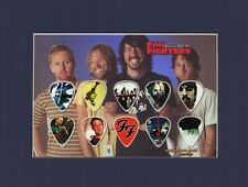 Foo Fighters Matted Picture Guitar Pick Set Collectors Gold All My Life