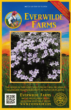 2000 Mountain Phlox Wildflower Seeds - Everwilde Farms Mylar Seed Packet